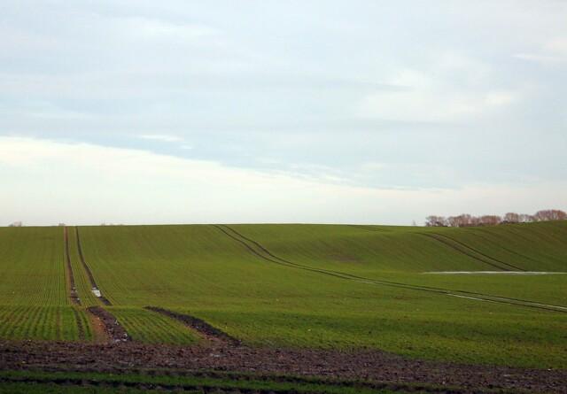 Familielandbruget: Vigtigt med oversigt over udenlandsk opkøb af dansk muld