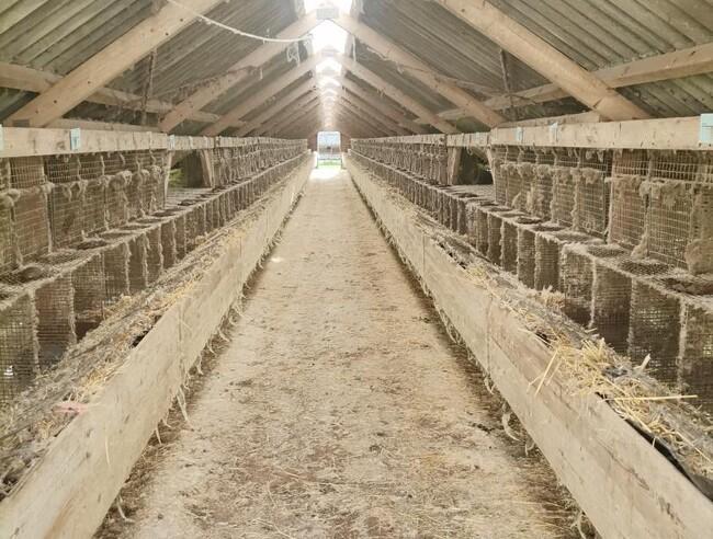 L&F er bekymret for forsinkelser hos Landbrugsstyrelsen