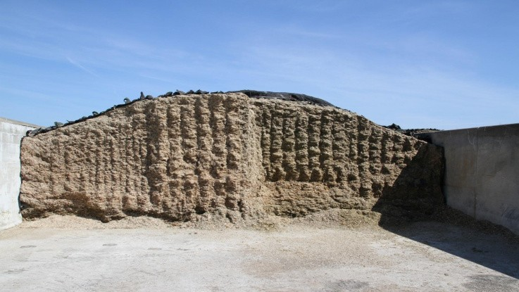 Kvægkonsulent opfordrer til handling: Få styr på grovfoderlageret