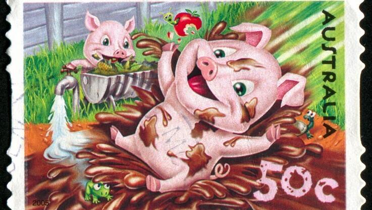 Australien opruster på svinepest-fronten igen