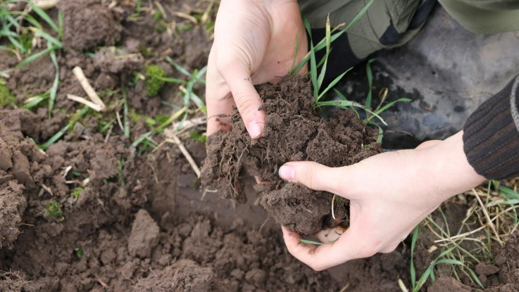 Frugtbar jord reducerer landbrugets CO2-udledning