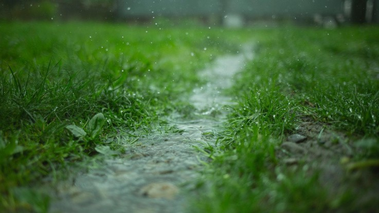 Vandpres på marker i det sydligeDanmark