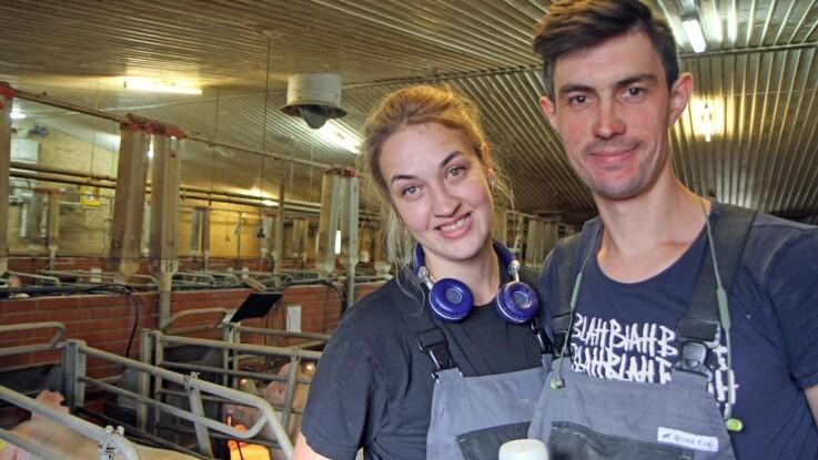 De mindste grise reddes med hjemmelavet tilskud