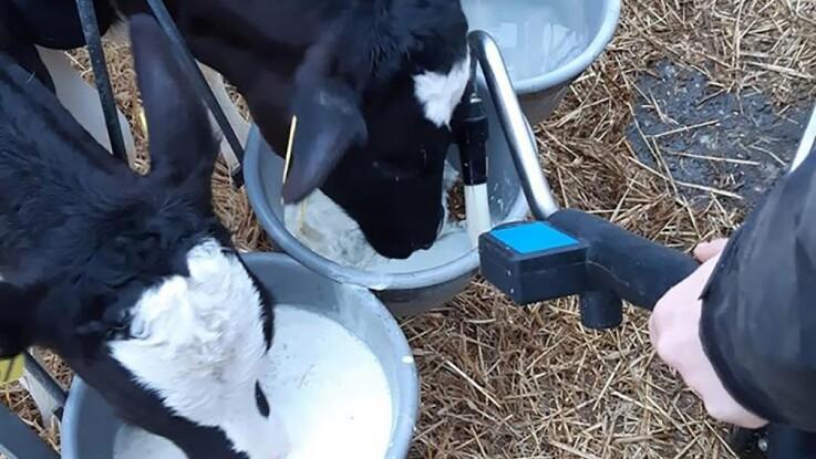 Stil krav til din mælkeerstatning