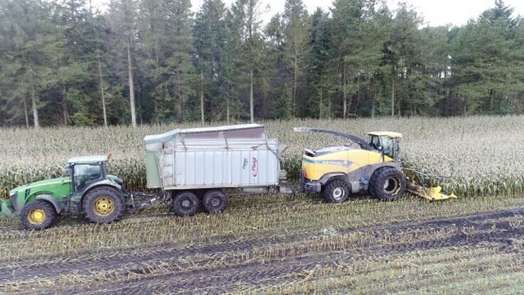 Duwbok-system sikrer majshøsten