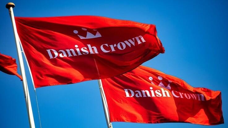 Kina forlangte eksport-stop fra Danish Crown
