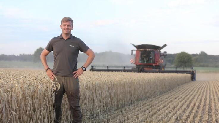 Godt i gang med overraskende god hvede-høst