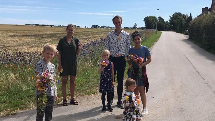 Blomsterstriberne på Djursland er en stor succes