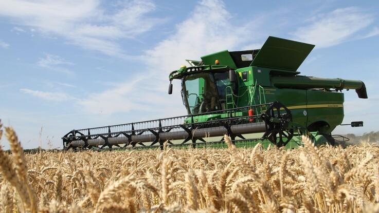 Jyske Markets: USDA forventer rekordstore slutlagre for hveden