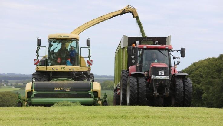 Giv græsmarkerne opmærksomhed nu