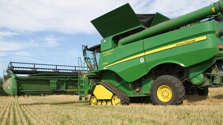Jyske Markets: Møllehveden i direkte duel med sortehavshveden