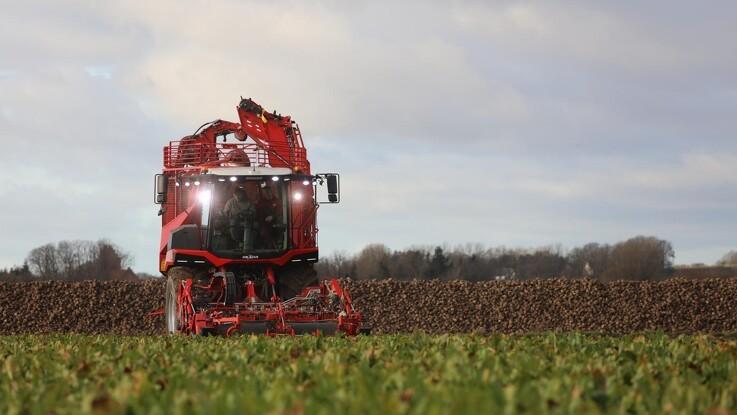 De økologiske sukkerroer skal dyrkes lokalt