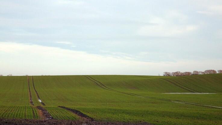 Færre landmænd har røde marker i den satellitbaserede kontrol