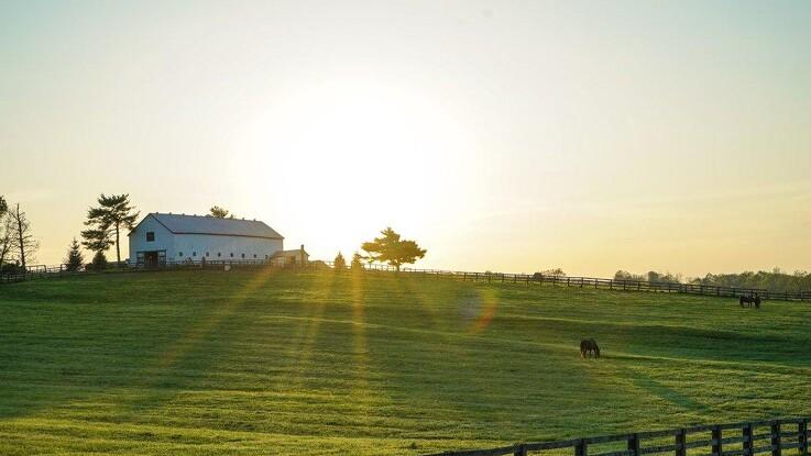 Den optimerede gård: Udnyt pladsen med gode opbevaringsmuligheder