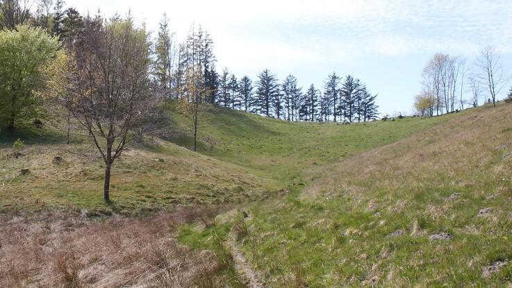 Agri Nord: Gør noget godt for naturen - og få tilskud til det