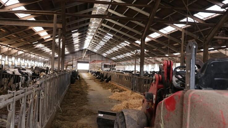 Arbejdstilsynet vil holde ekstra øje med landbruget