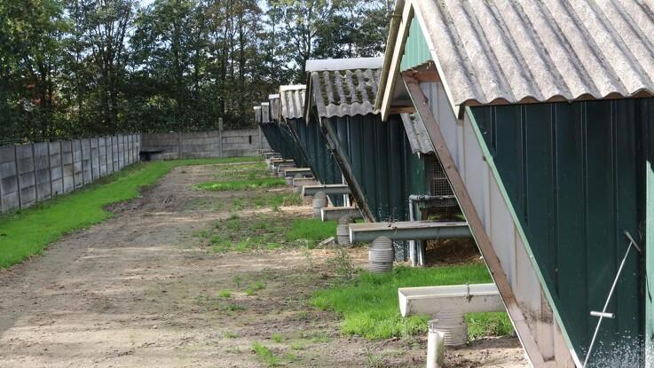 166 smittede minkfarme