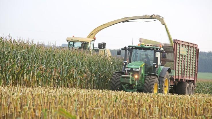 Jyske Markets: Ukrainske majsudbytter fortsætter nedturen