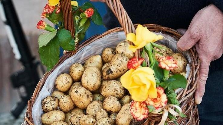 Nye danske kartofler til kongehuset