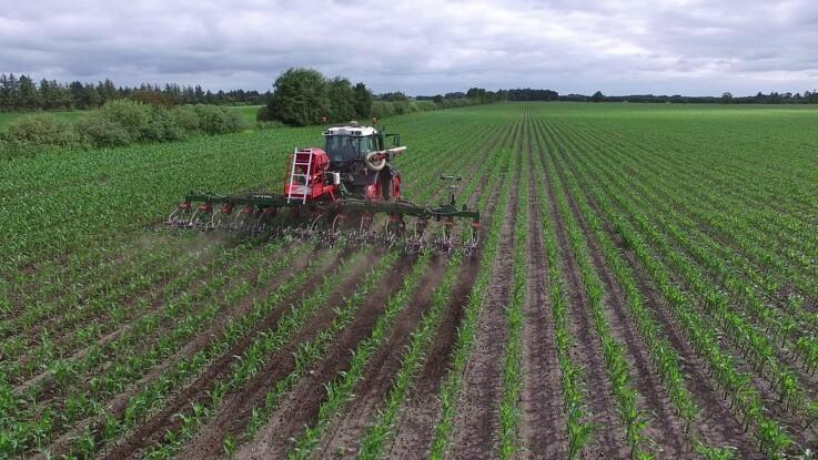 Efterspørgsel på præcis rensning af majs er stigende
