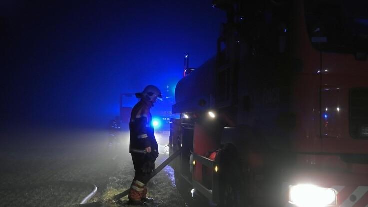 Køer reddet ud ved gårdbrand