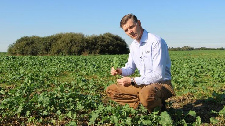 BL: Landbruget har leveret på klimaindsatsen