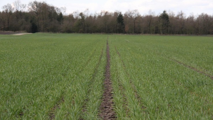 Landbrugsstyrelsen vil styrke kontrollen med landbrugstøtten efter alvorlig kritik fra Rigsrevisionen