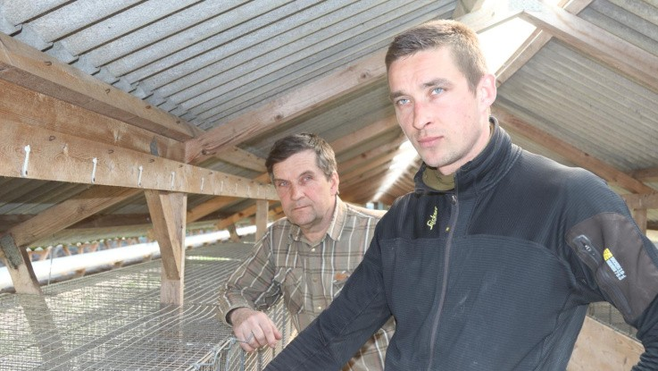Minkavlere kræver avlergaranti i mindst fem år