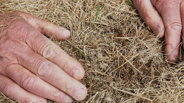 Foreninger: Brug Conservation Agriculture i EcoSchemes