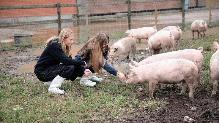 Flere kan opleve fællesskab på farmercamp