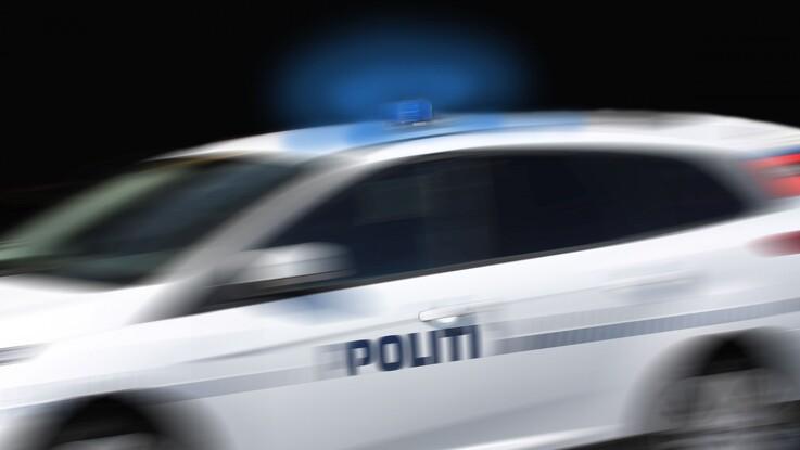 55 slagtesvin død efter ulykke