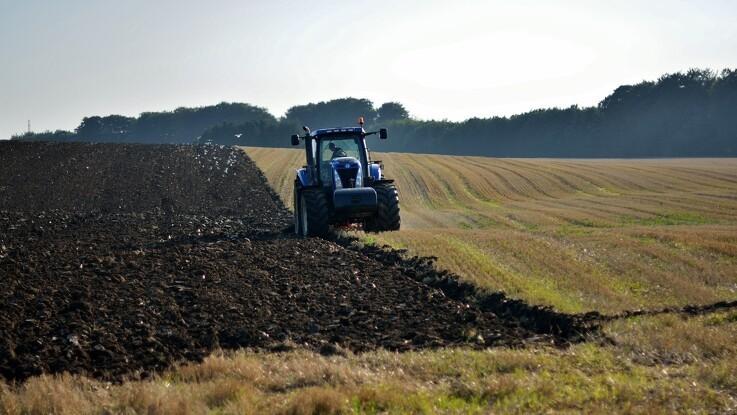 Flere danske landmænd dropper ploven