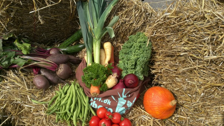Høstmarked for hele familien