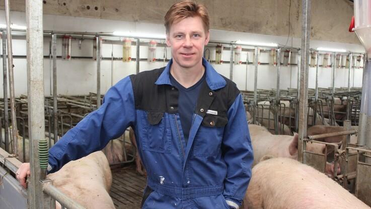 Svineproducenter glæder sig over salget af Tulip UK