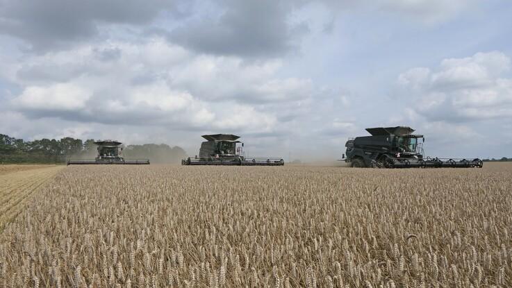 Ideel høstsalut på Sjælland