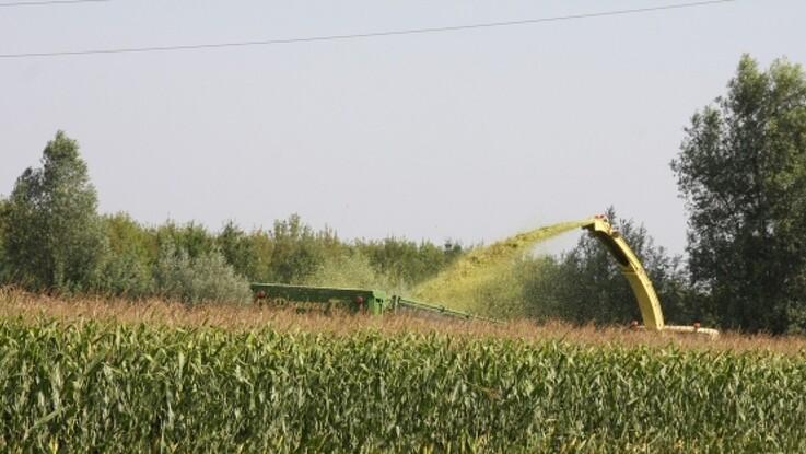 Debat: Myte at landbrugets midler lukker vandboringer