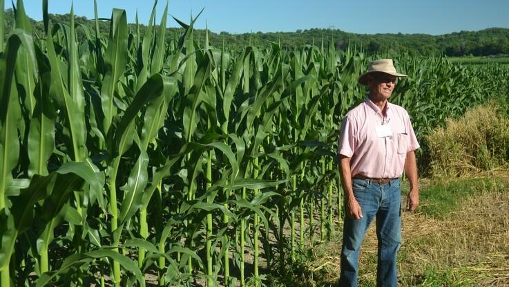 Dårlig høst i Midt-vestens landbrugsområder berører hele verdens økonomi