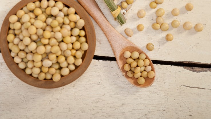 Jyske Markets: Pæne stigninger til sojaolien