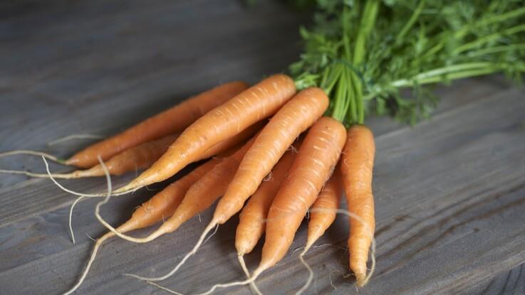 Danmark skal være verdens bedste til bæredygtige fødevarer