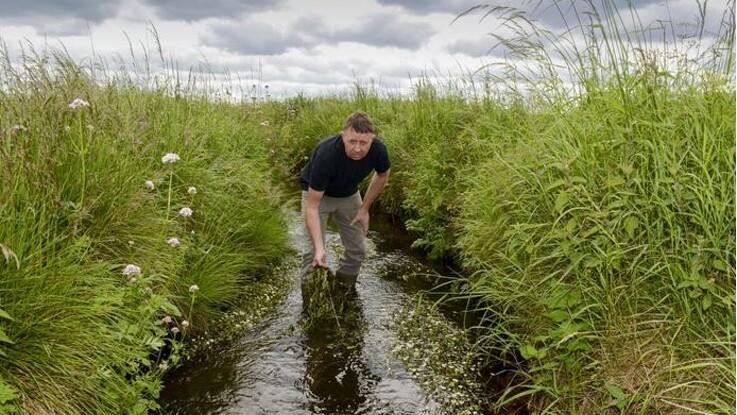Vestjysk: Uværdig behandling af landbruget i kvælstofsag