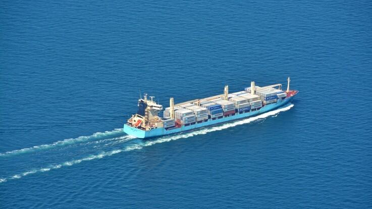 ASF måske ingen hindring for tysk eksport