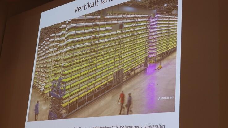 - Holland investerer massivt i vertikalt landbrug