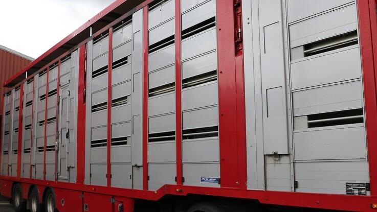 Grænsekontrol kan have konsekvenser for transport af levende dyr