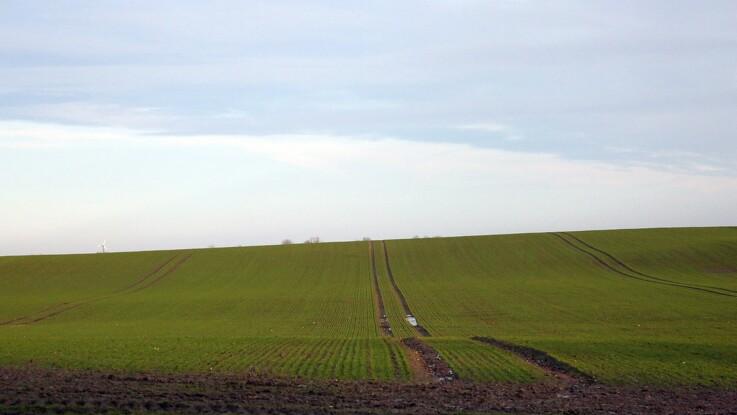 Søg om tilskud til målrettet kvælstofregulering på §3-marker