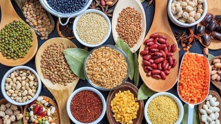 Boost til produktion af planteprotein