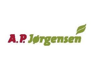 A. P. Jørgensen