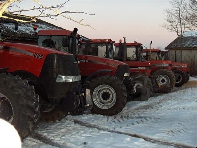 Case IH Traktor KØBES